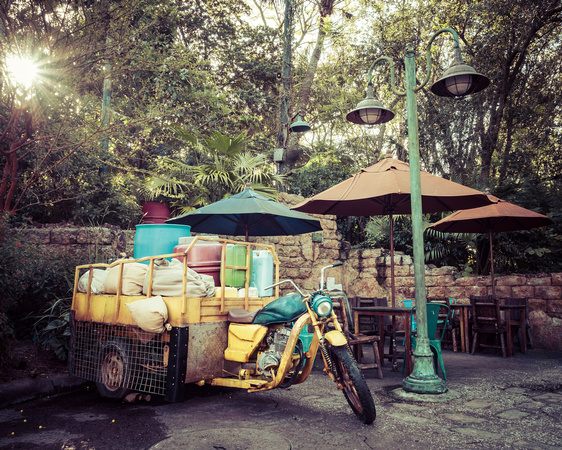 MLCreations Photography: Animal Kingdom &emdash; Delivery Rest Stop
