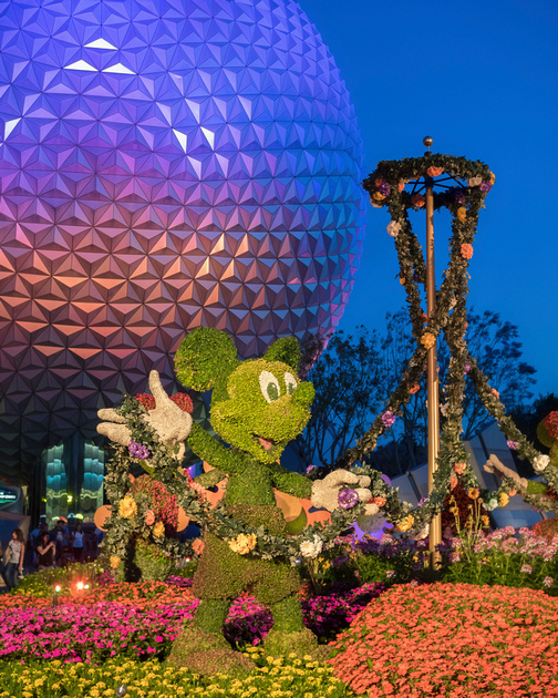 MLCreations Photography: Blog Post Related &emdash; Epcot Spring