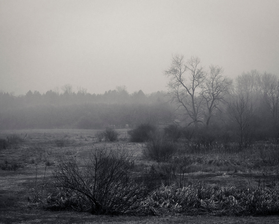MLCreations Photography: Blog Post Related &emdash; A Haze Toward the Night