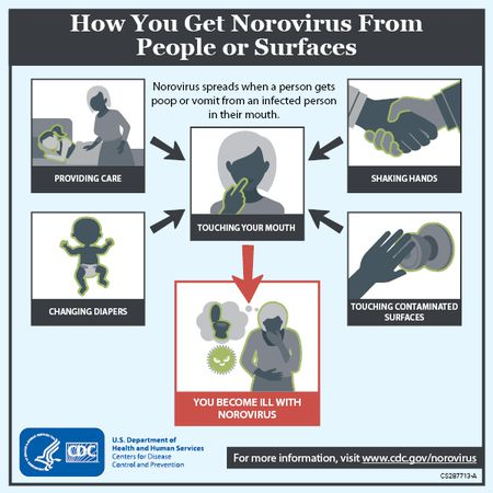 Michigan officials warn residents about symptoms of norovirus ...
