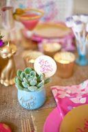 cadeau-succulentes-mariage