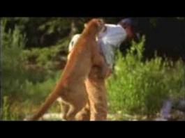 Un alergător a reușit să scape cu viață după ce a strangulat o pumă care l-a atacat (VIDEO)