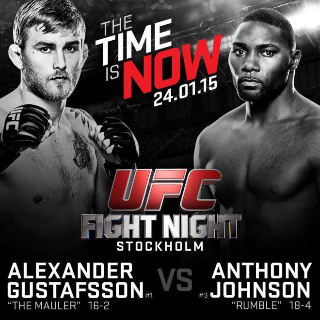 Gustafsson-vs-Johnson