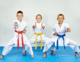 Kids Karate, similar to Tae Kwon Do for kids but more focus on Self Defense for Children