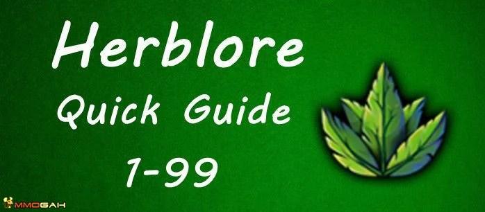 runescape guide 1 99
