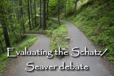 Evaluating the Schatz/Seaver debate