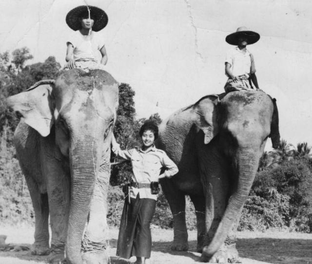 Louisa Benson Craig Poses With Two Elephants In Kayin State
