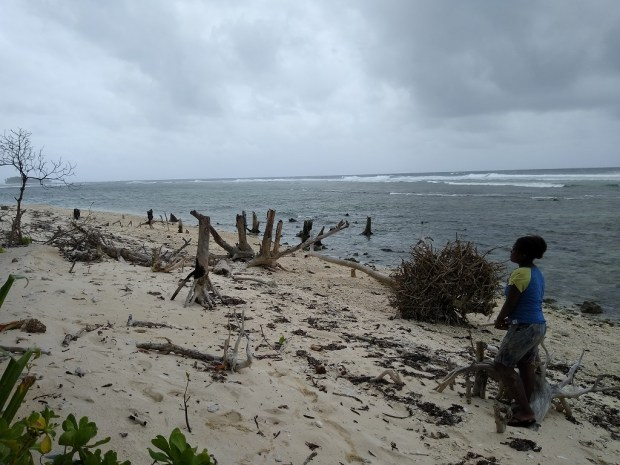 Shoreline Erosion on Fanalei Island