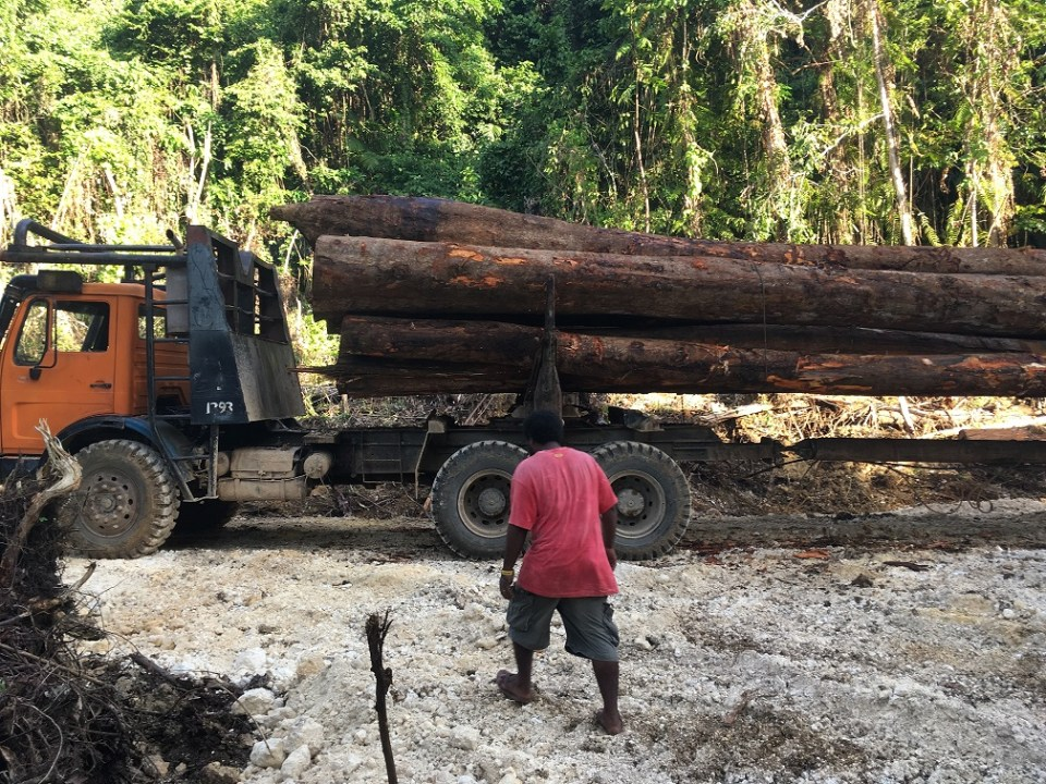 Solomon Islands, Logging
