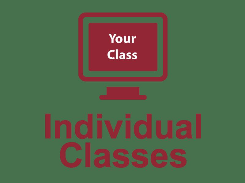 insidvidual_class
