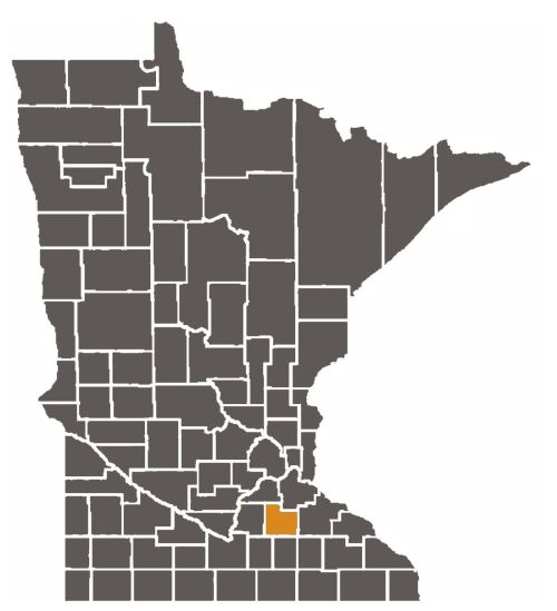 small resolution of minnesota map with rice county highlighted