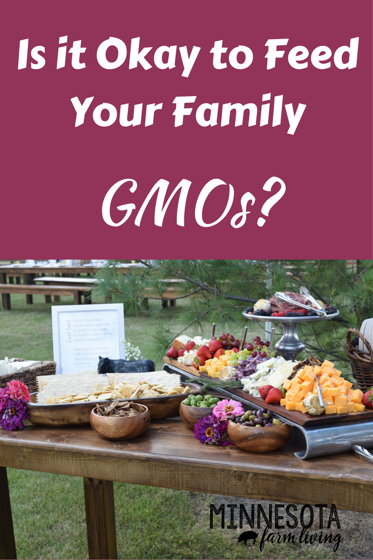 Is it okay to feed your family GMOs? Learn what GMOs are and if they are harmful. Biotechnology offers many benefits and there is no need to fear GMOs.
