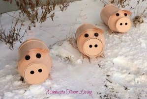 Outdoor Pigs in the Landscape