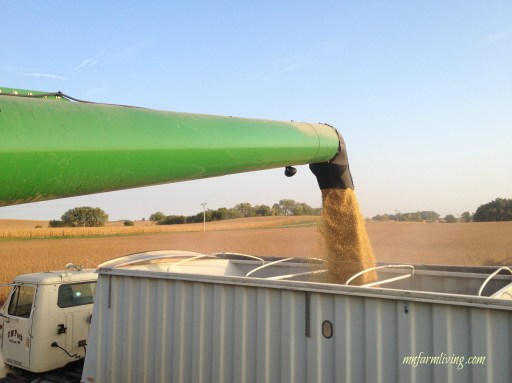 10 things non farm people don't know about harvest