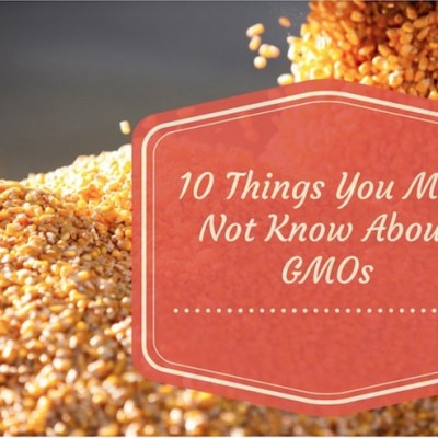 10 Things You May Not Know About GMOs