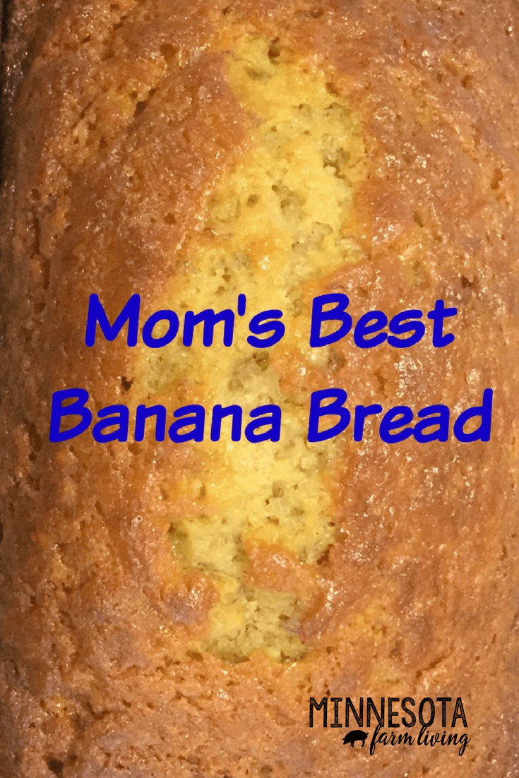 Absolutely the BEST tasting banana bread. The recipe is easy and simple. Probably what you would find in a church cookbook. It is very moist and tasty.