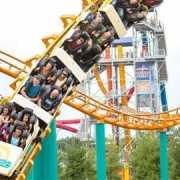 valley-fair-roller-coaster-fun