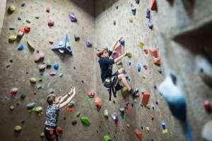 Kids on rock climbing wall