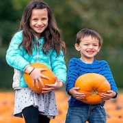 Brother and sister holding pumpkins and smiling