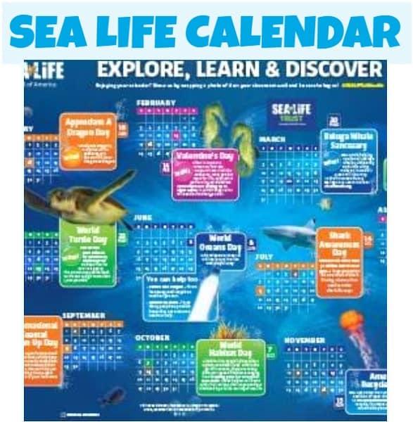 Sea Life Mall of America Calendar