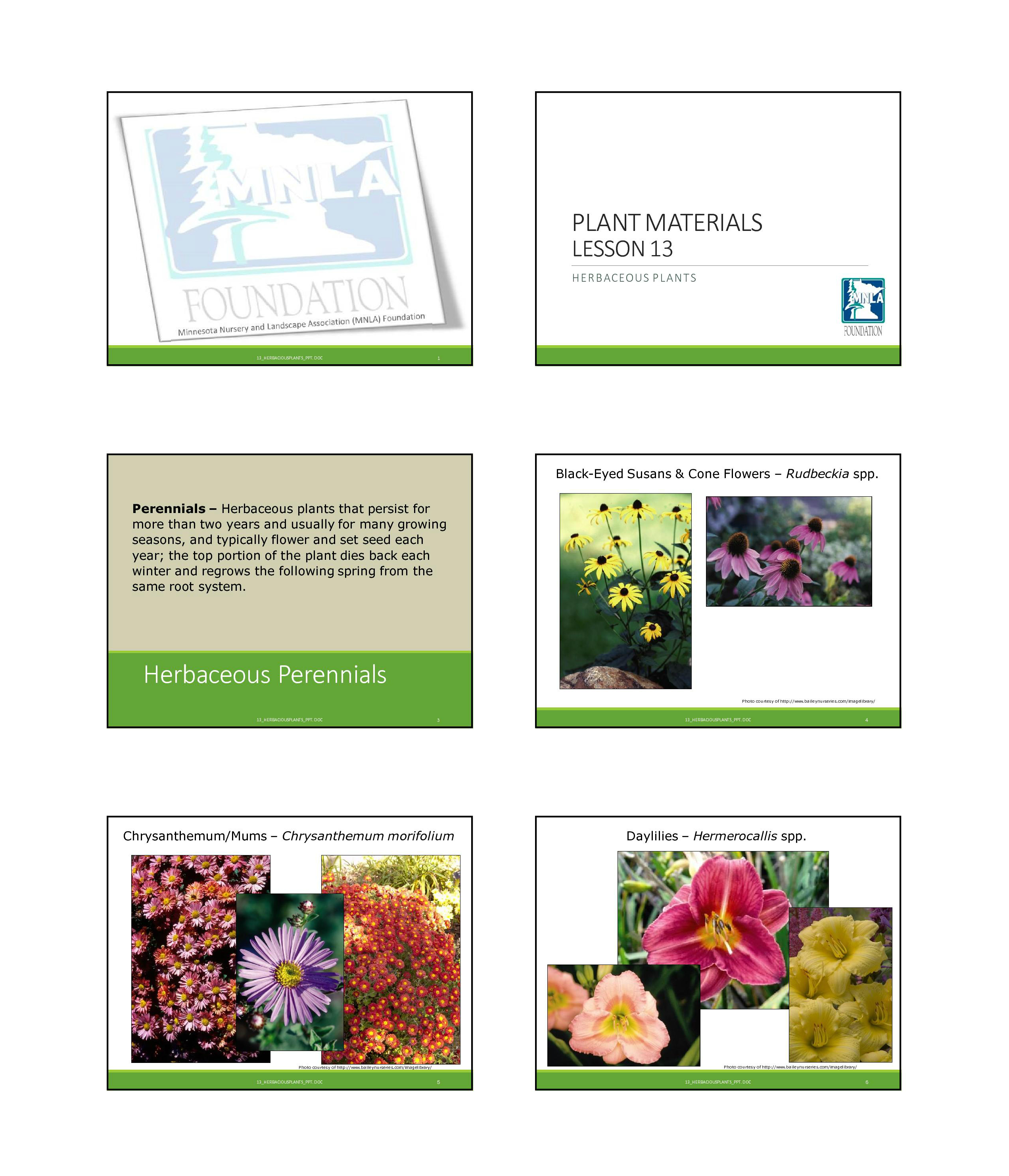 How Does Your Garden Grow Virtual Lab Worksheet
