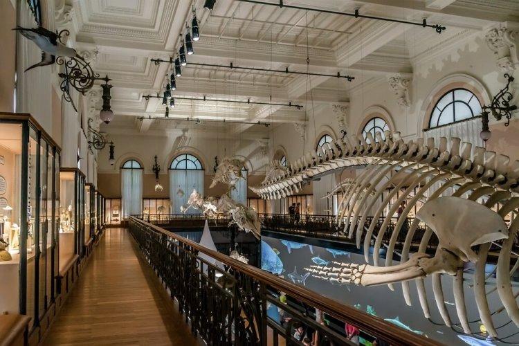 Het Oceanografisch Museum