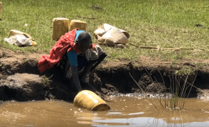 New effectively offers hope as Kenya drought drags on