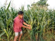 FARMS International Offers Hope as Hunger Pains Grow Amid Coronavirus
