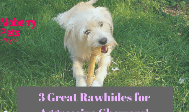 Best Rawhide for Aggressive Chewers