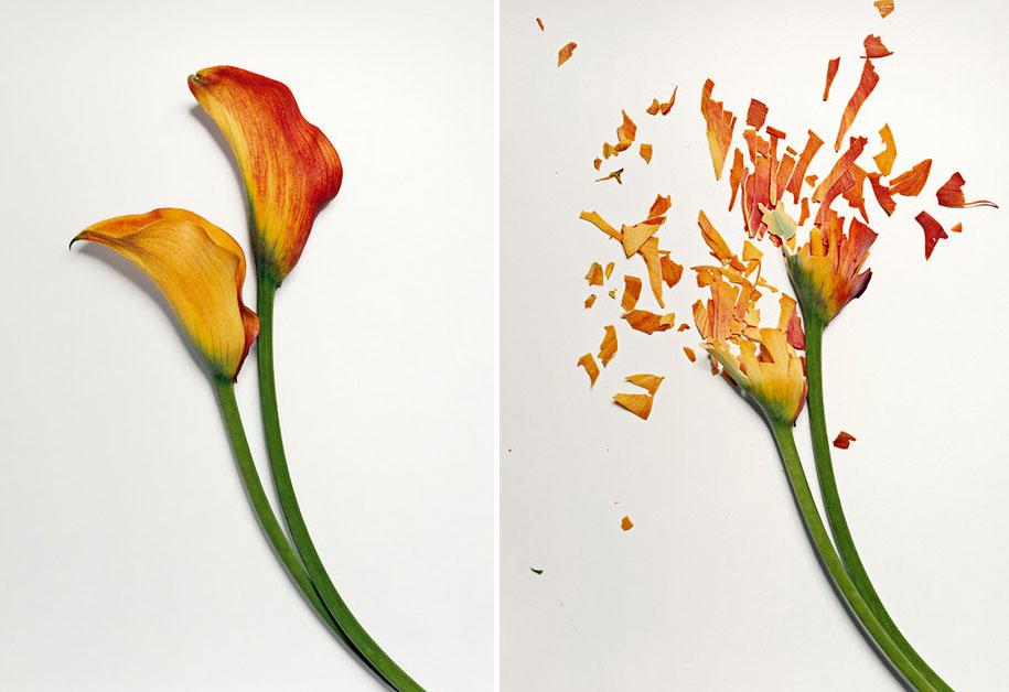 Bunga-bunga Pecah 3