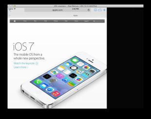ios 7 ipad (1)