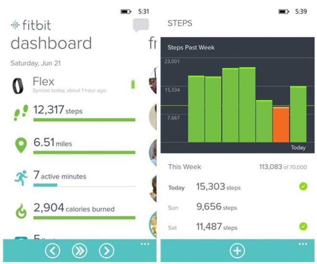 Fitbit App Screenshots
