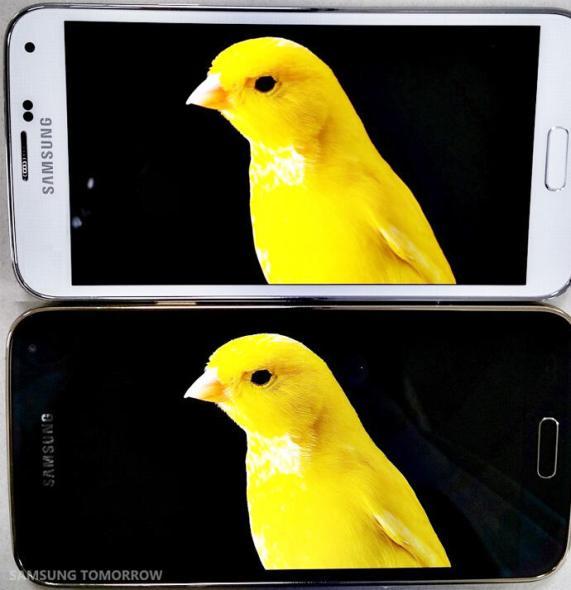 Samsung Display Vergleich