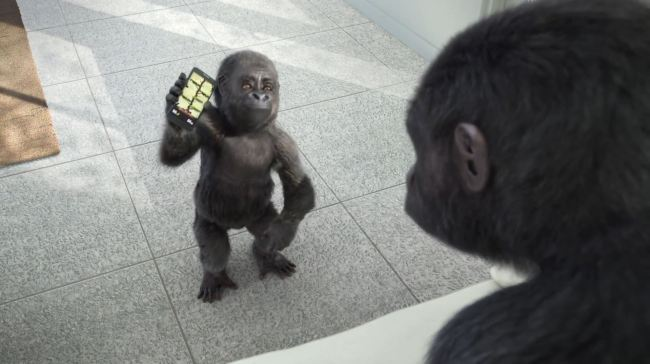 gorilla glass drop