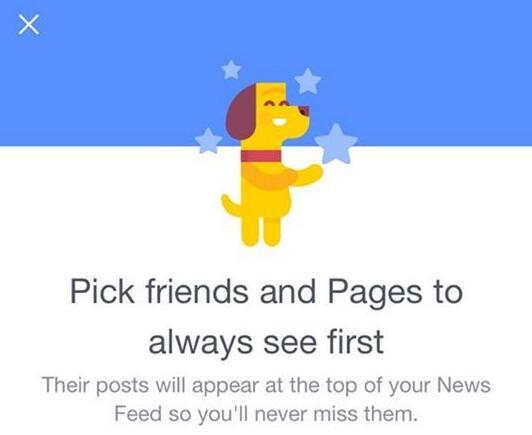 FB Hund Freunde