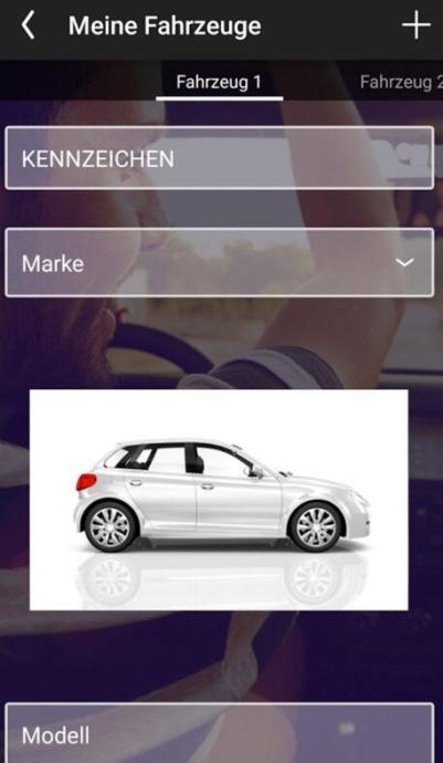 Fahrzeugdaten