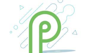 Android P Logo Google Header