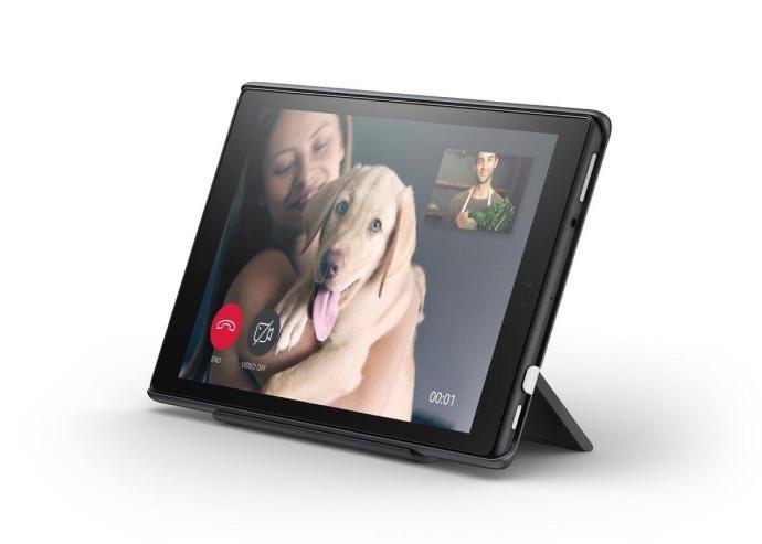 Amazon Show Mode Hund