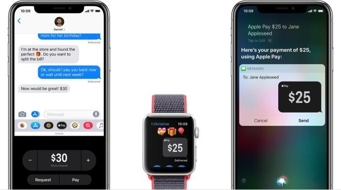 Apple Pay Cash Header