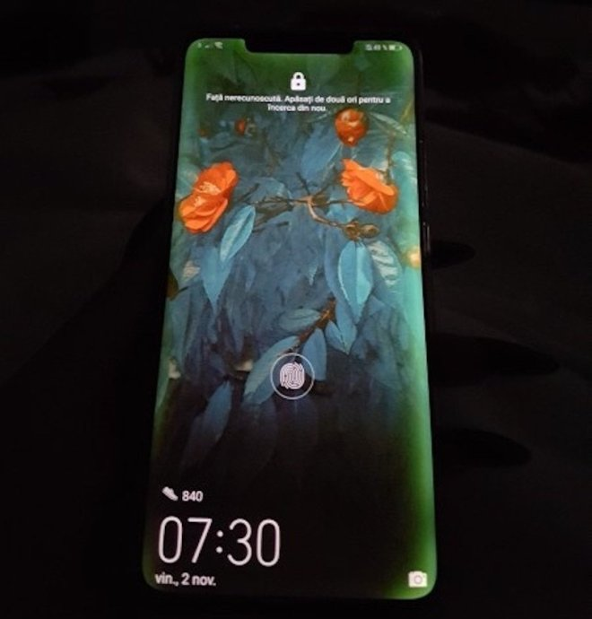 Huawei Mate 20 Pro Display Gruen