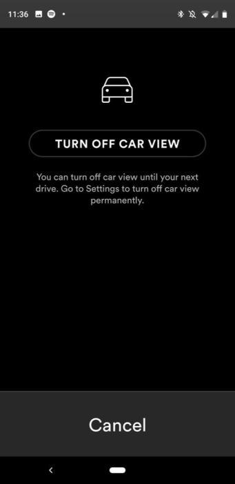Spotify Car View 1