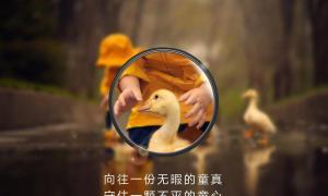 Huawei P30 Pro Zoom Teaser4