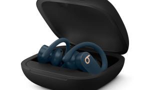 Powerbeats Pro Case