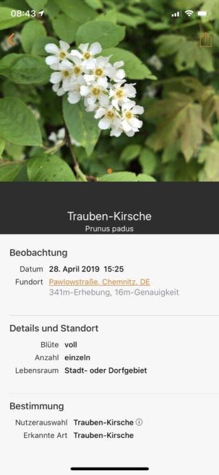 Flora Incognita App 3