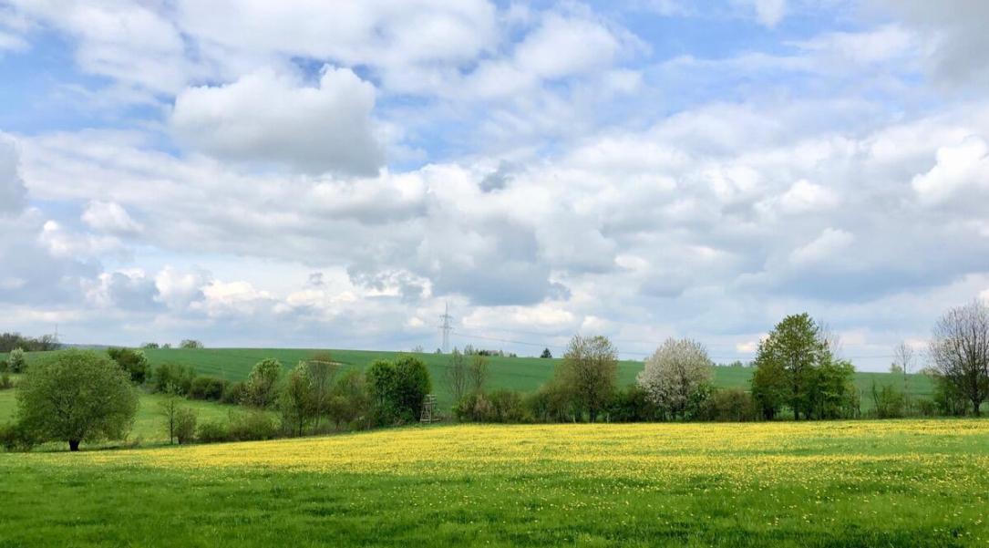 Natur Umwelt Landschaft