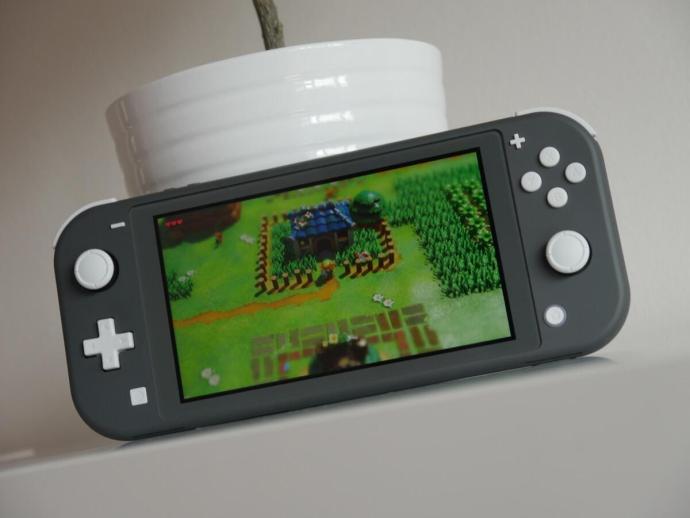 Nintendo Switch Lite Test7