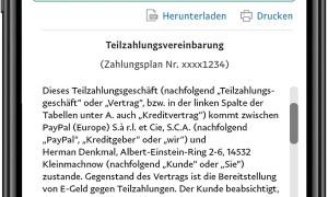 Paypal Ratenzahlung 2