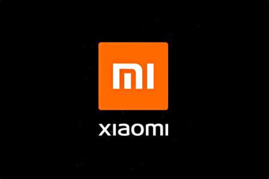 Xiaomi Logo Header