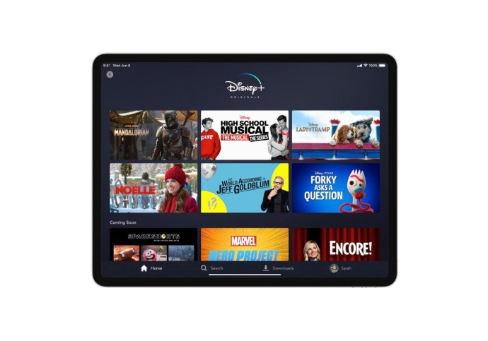 Disney Plus Ipad