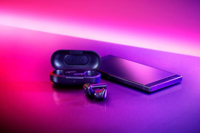 Razer Hammerhead True Wireless Bild1